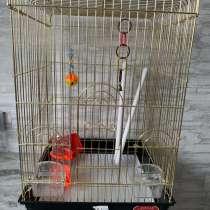 Продам клетку для птицы, в Владивостоке
