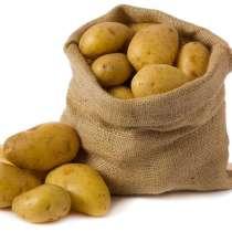 Картофель, в Пскове
