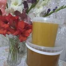 Свежий мед 1500, в г.Павлодар