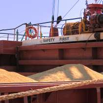 Кукуруза, ячмень экспорт в Индия, в Москве