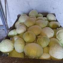 Продаем капусту с холодильника, в г.Кишинёв