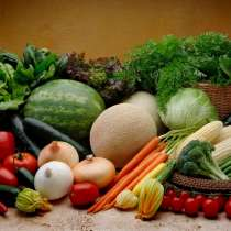 Продаем овощи и фрукты, в г.Минск
