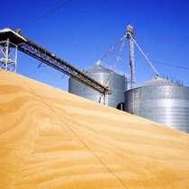 Мука пшеничная премиум, производства Казахстан оптом, в г.Костанай