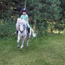 Катание на пони/лошади, фотосессия, отдых, в г.Гродно
