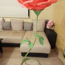 Роза-торшер, в Нижнем Новгороде