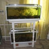 Акваферма, много аквариумов, не дорого, в Самаре