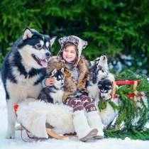?? Новогодний сказочный ТУР «В гости к Хаски»??, в г.Минск