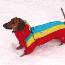 Индивидуальный пошив одежды для собак, в Екатеринбурге