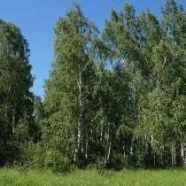 Продам земельный участок в с. Никольское, в Красноярске