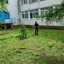 Покос травы, стрижка газонов, в Кемерове