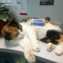 Ветеринарная клиника Рядом с метро Ясенево, в Москве
