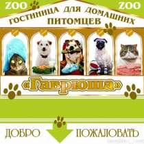 Приглашаем вас в гостиницу для собак Гаврюша, в Калининграде