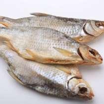 Рыба, в Кизляре