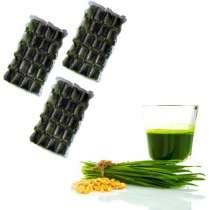 Сок проростков пшеницы. 30 порций на 1 месяц, в Казани