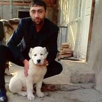 Карен, 50 лет, хочет познакомиться – Ищу девушку, в г.Ереван