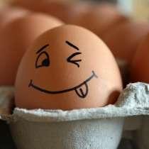 Яйца от домашних кур, в Ангарске