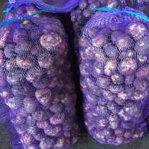 Картофель из России с доставкой до Казахстана и Узбекистана, в Кемерове