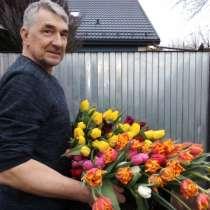Тюльпаны к 8 марта, в Ставрополе