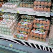 Упаковка для куриных яиц (ПЕТФ)12 гнезд коричнеая,прозрачная, в г.Днепропетровск