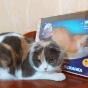Когтедралки для кошек в Волгограде, в Москве