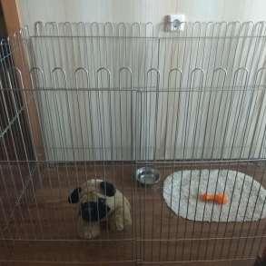 Вольеры для собак в квартиру, в Красноярске