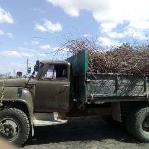 Вывоз мусора в Омске. Вывоз дачных веток в Омске, в Омске