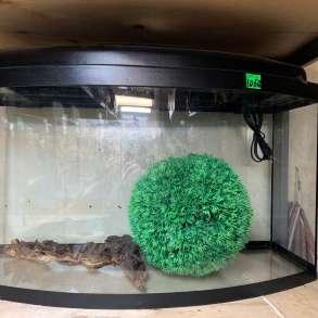 Распродажа аквариумов, в Долгопрудном