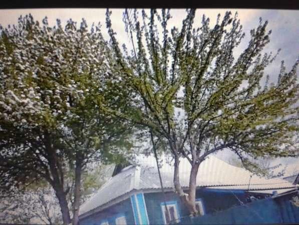 Дом в Курской области Суджанского р-она с Плёхово в Мурманске фото 4