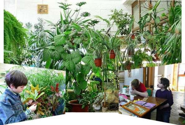 Школа цветоводства, флористики и фитодизайна