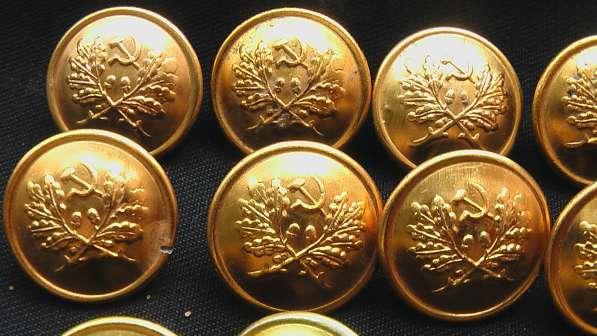 Комплект пуговиц егеря лесничего СССР эмблемы