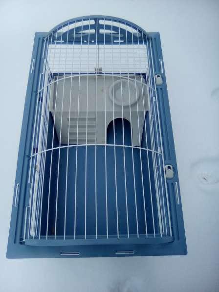 Клетка для свинок и кроликов в Химках фото 3