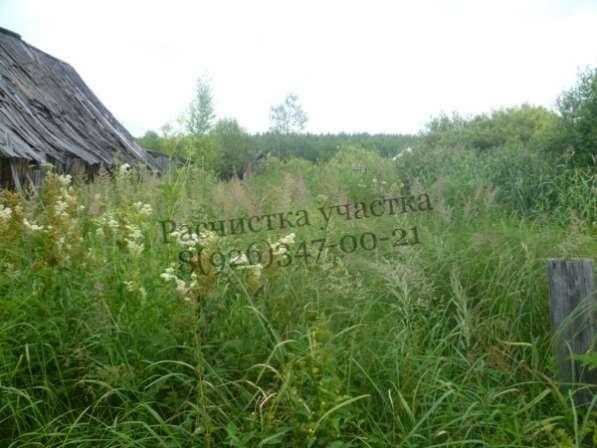 Покос травы, бурьяна, сухостоя.