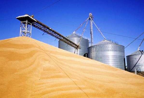 Мука пшеничная премиум, производства Казахстан оптом
