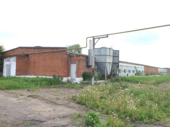 Складское помещение, 1052 м² в Одинцово фото 4