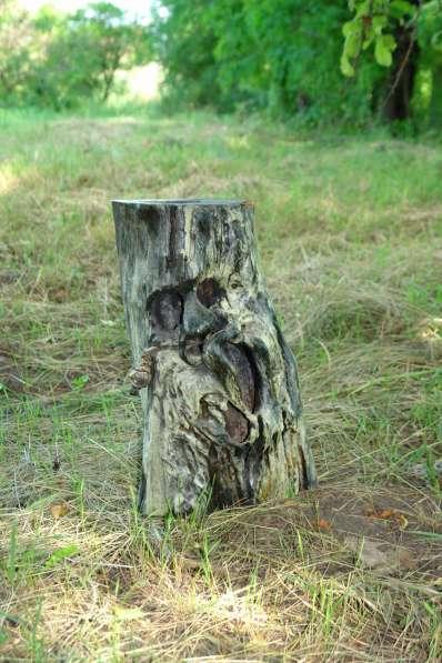 СКУЛЬПТУРА для ландшафта из дерева, камня, метала, памятники в Краснодаре фото 5