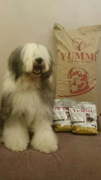 YUMMI Премиум Корм для собак без консервантов и красителей