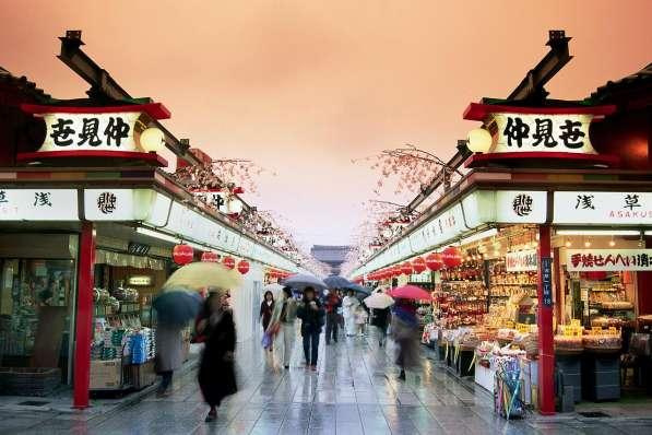 Предлагаем поездку в Японию