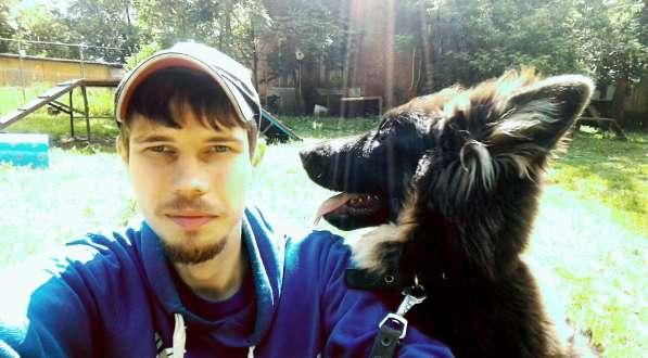 Передержка и дрессировка собак в Раменское фото 17