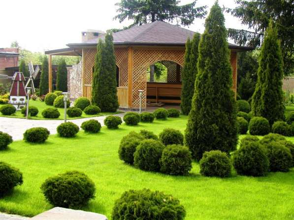 Design for landscape landscaping with trees 7 image post  landscaping design ideas with