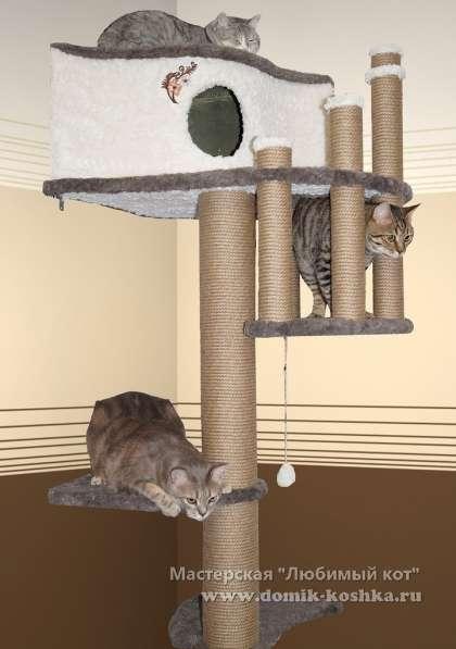 Продам комплекс лазялку для кошек