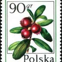 Марки 50gr 90gr Польша 1977 год Лесные ягоды, в Москве