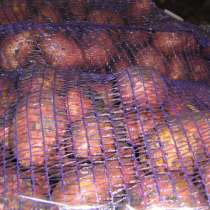 Картофель оптом, в Новосибирске