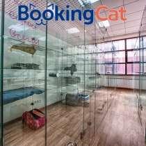 Гостиница для кошек BookingCat, в Санкт-Петербурге