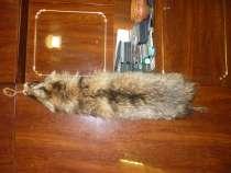 Продам шкуру енота длинна 88 см целая хорошая выделка, в Великом Новгороде