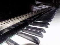 Пианино Чайка, в Бийске
