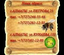 Масло кедрового ореха, в г.Алматы