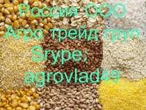 Куплю сою. протеин 38% и выше. до 200000 тонн, в Благовещенске