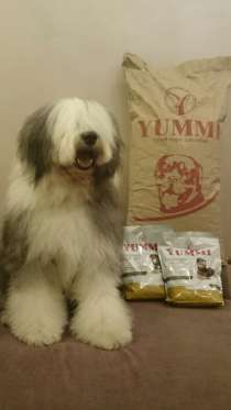 YUMMI Премиум Корм для собак без консервантов и красителей, в Новосибирске