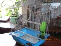 Молодой попугайчик с клеткой, в Красноярске