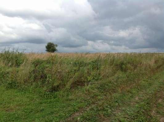 Продается земельный участок 12 соток в д. Шваново, Можайский р-н, 140 км от МКАД по Минскому, Можайскому шоссе. Фото 4